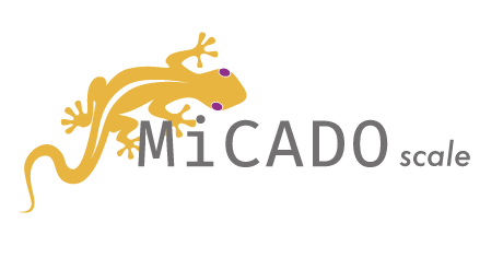 MiCADO Logo